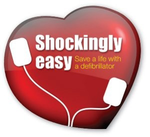 Shockingly Easy Logo