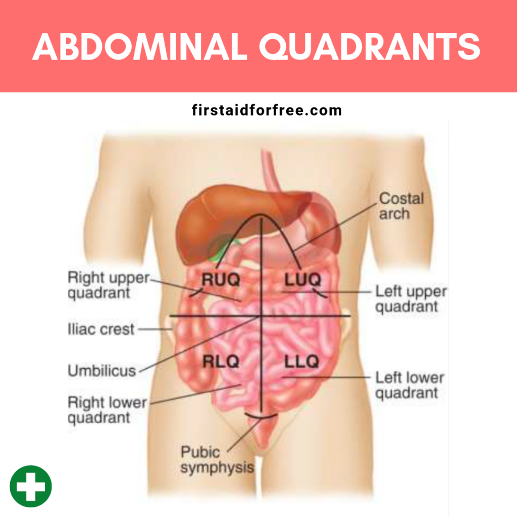How To Assess Abdominal Pain First Aid For Free